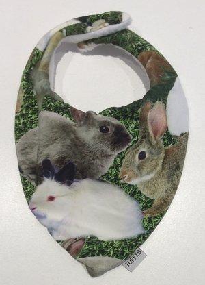 Dregglis Kaniner 1