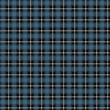 Skotskrutig jersey, turkos - Ekologisk
