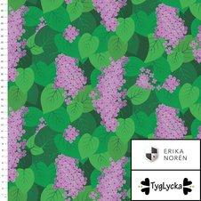 Lilacs - Ekologiskt