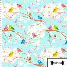 Spring Birds - Ekologiskt