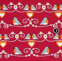 Dicky Bird - EKOLOGISKT